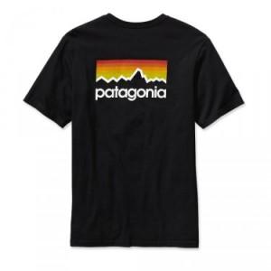 patagonia-koszulka-line-logo-tshirt-large