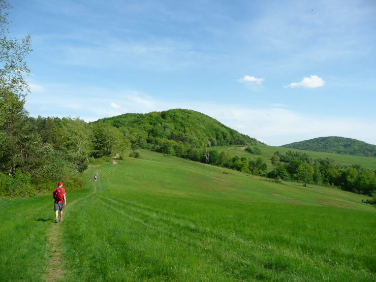 Niedaleko przełęczy Cigielka