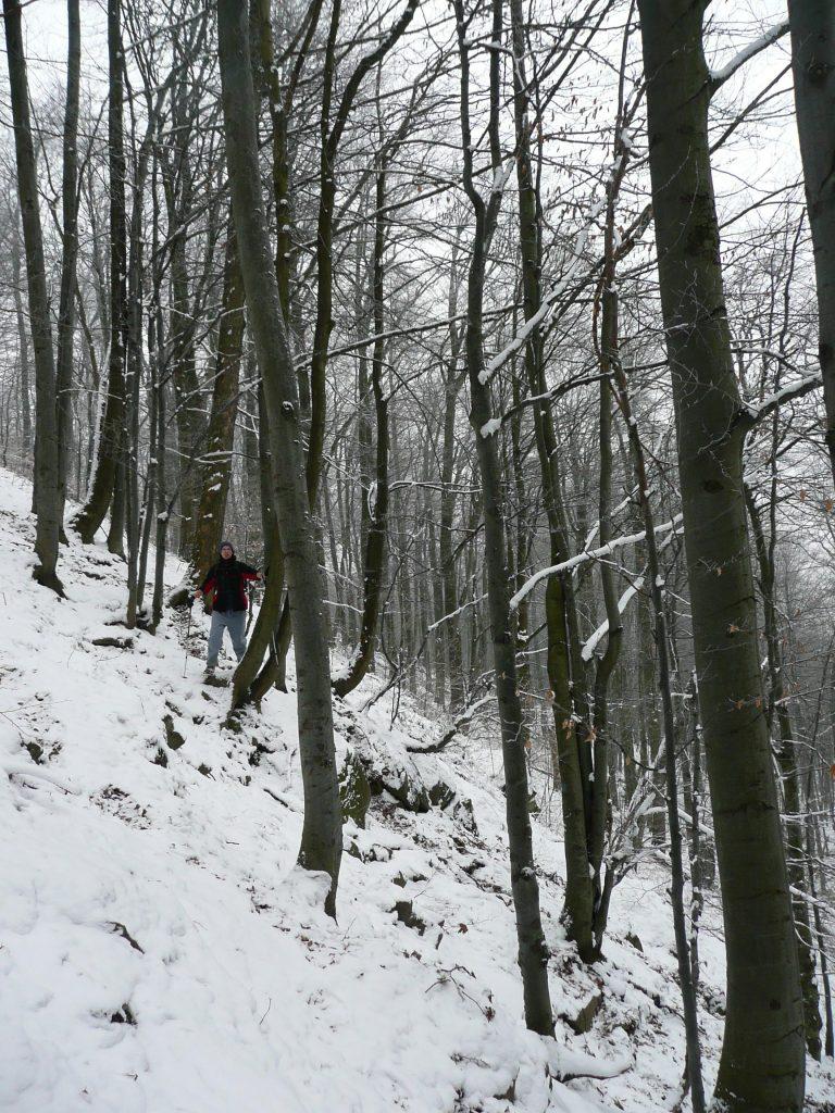 Zachodnia ściana Lackowej zimą