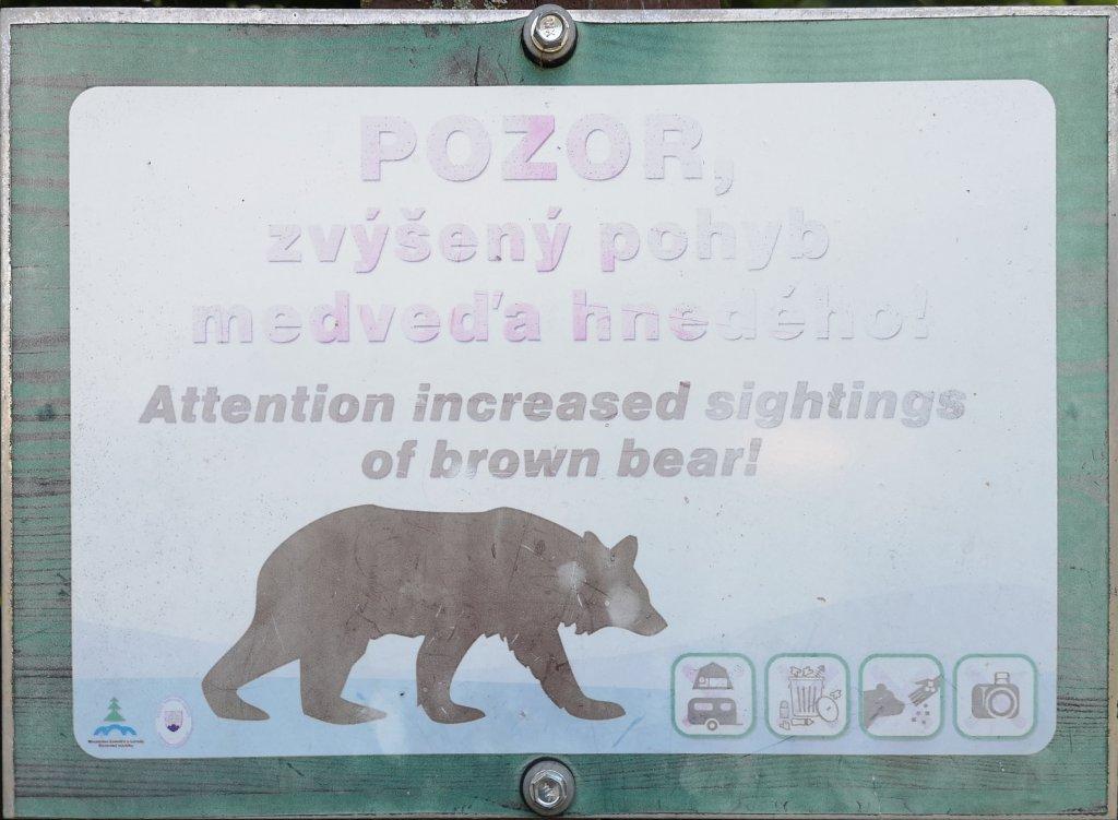 tabliczka, uwaga, niedźwiedz,