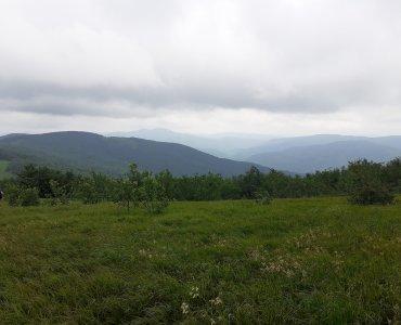 krajobraz, chmury, góry, las
