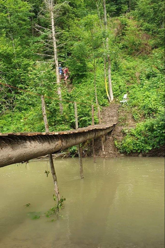 Wąski mostek nadrzeką, wtle las.