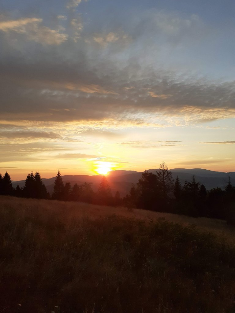 Wschód słońca wgórach, las.