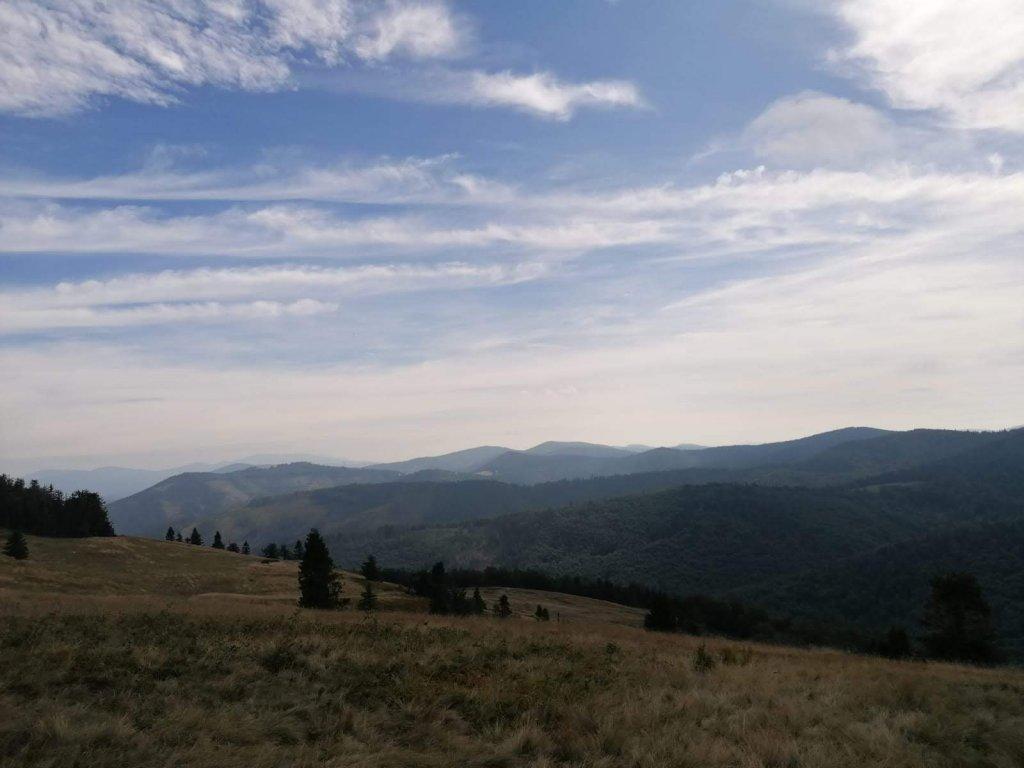 Krajobraz, góry, lasy, polana, niebo.