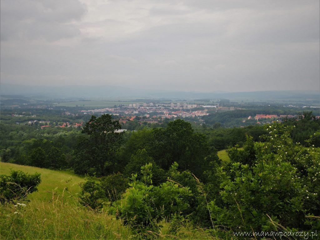 Krajobraz namiasto zewzgórza, drzewa, łąka, miasto wtle.