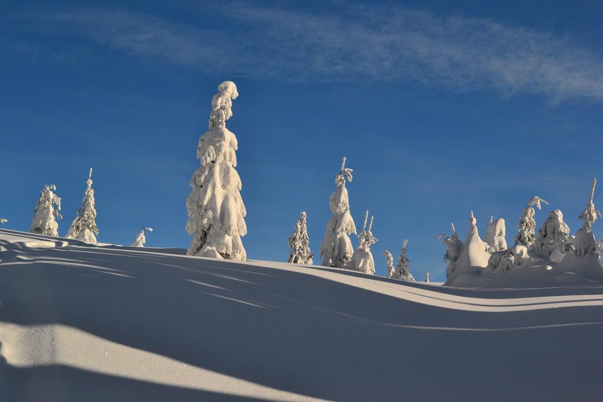 Rysianka zimą ma niepowtarzalny element bajkowości