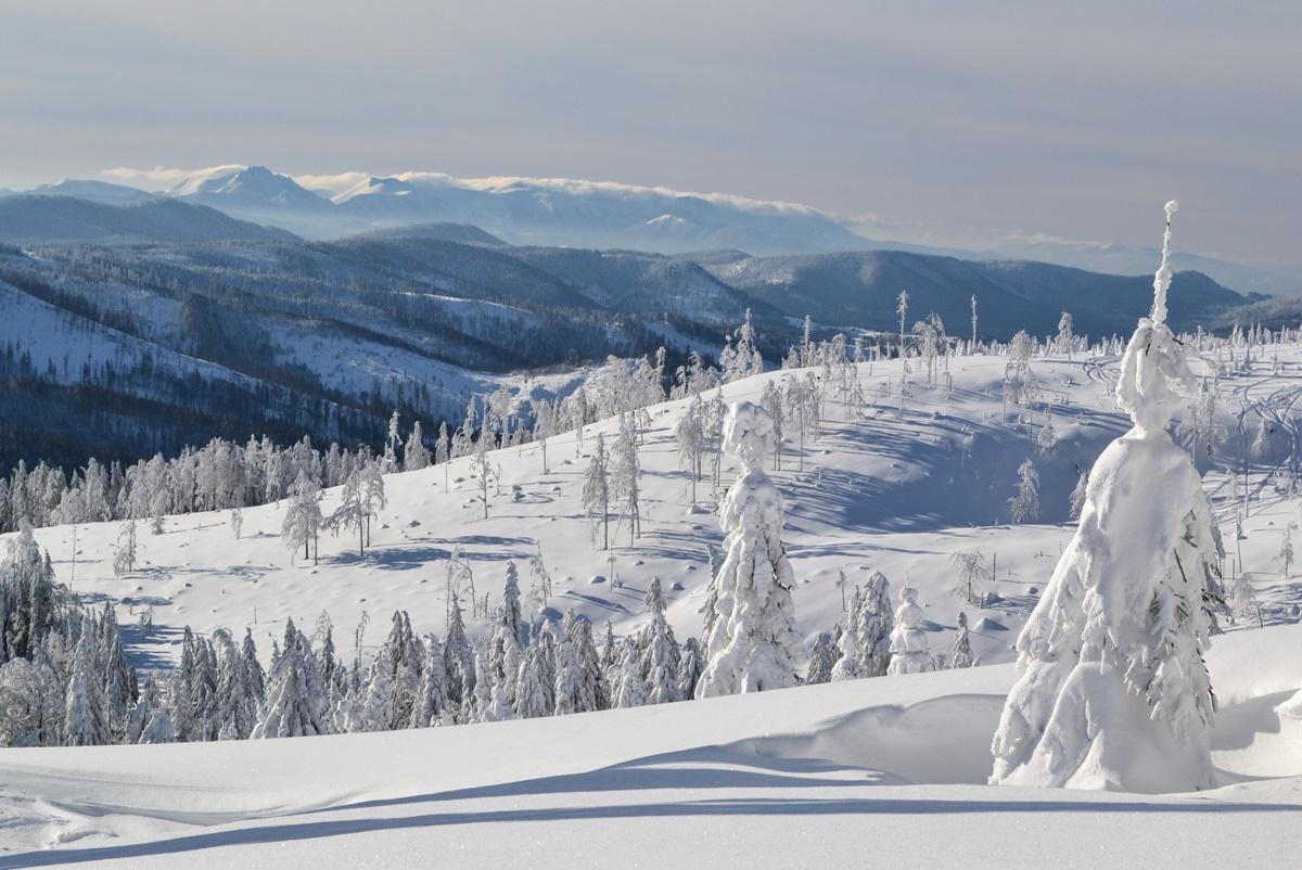Zaspy białego puchu sięgają 50-100 cm idotego piękne panoramy naTatry, Małą Fatrę, Babią Górę czynieopodal Pilsko